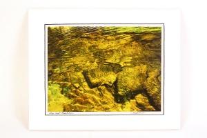 JB Anderson, Shilo Creek , Photograph, Archival ink & Paper